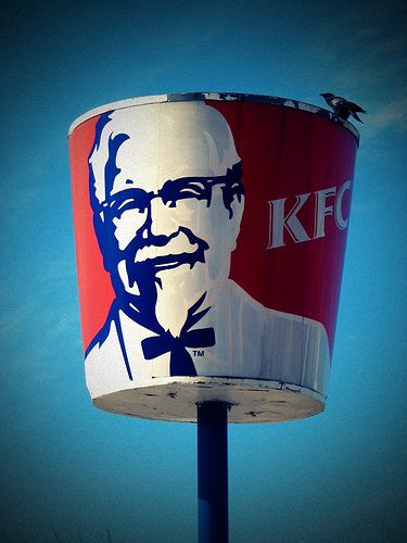 kfc bucket with bird